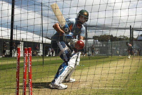 Cricket Ball Stop Nets 1.8mm x 50mm | Lion Trading GB Ltd