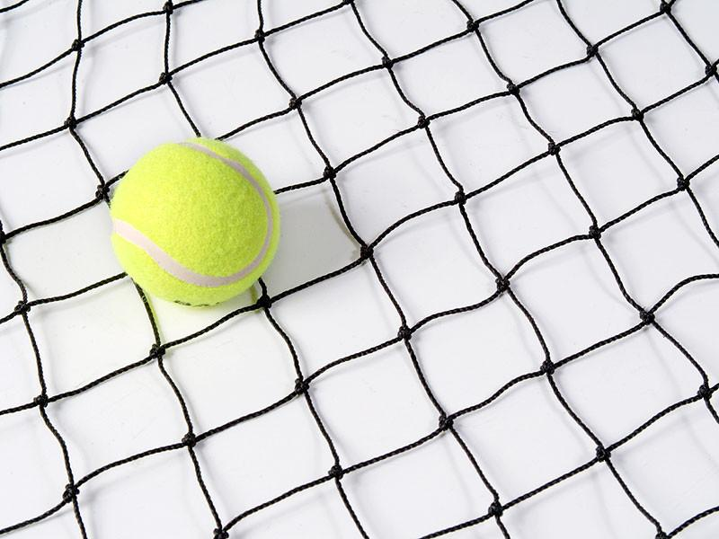 50mm x 2mm netting