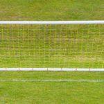 Samba trainer goals 8'x4'