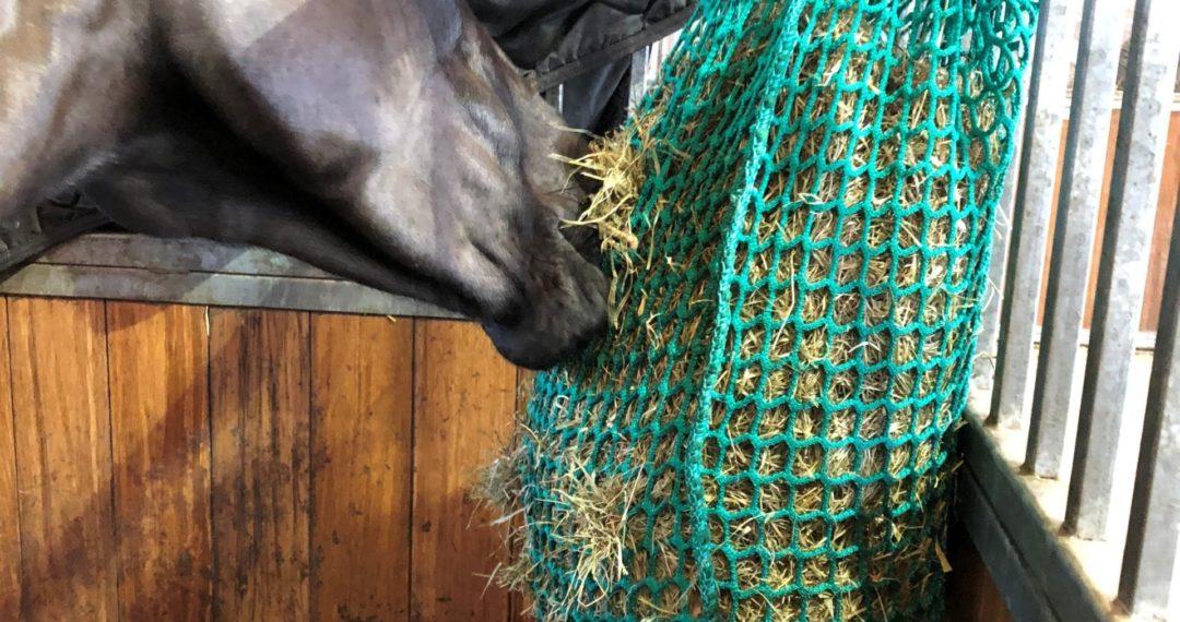 slow feeder hay net